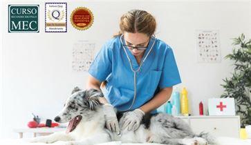 Clínica Médica e Cirúrgica de Pequenos Animais- Pós Graduação